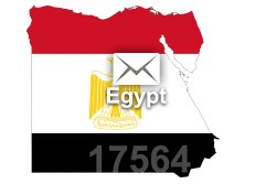 2021 fresh updated Egypt 17 564 business email database