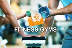 2020 fresh updated USA Fitness gyms 3 468 email database