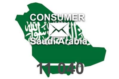 2020 fresh updated Saudi Arabia 11 040 Consumer email database